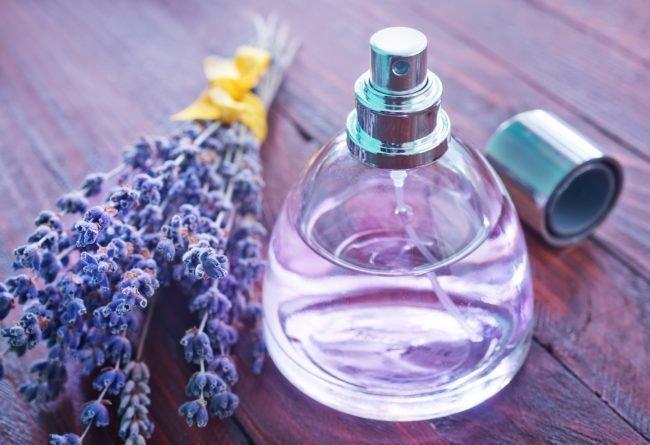 nishevye-brendy-parfyumerii-spisok_03