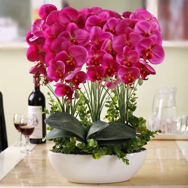 Заказать живые цветы на домашних условиях
