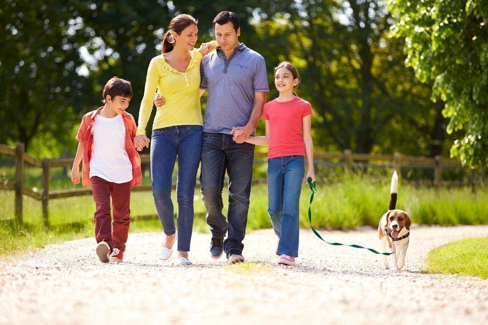 Родители гуляют с детьми и собакой