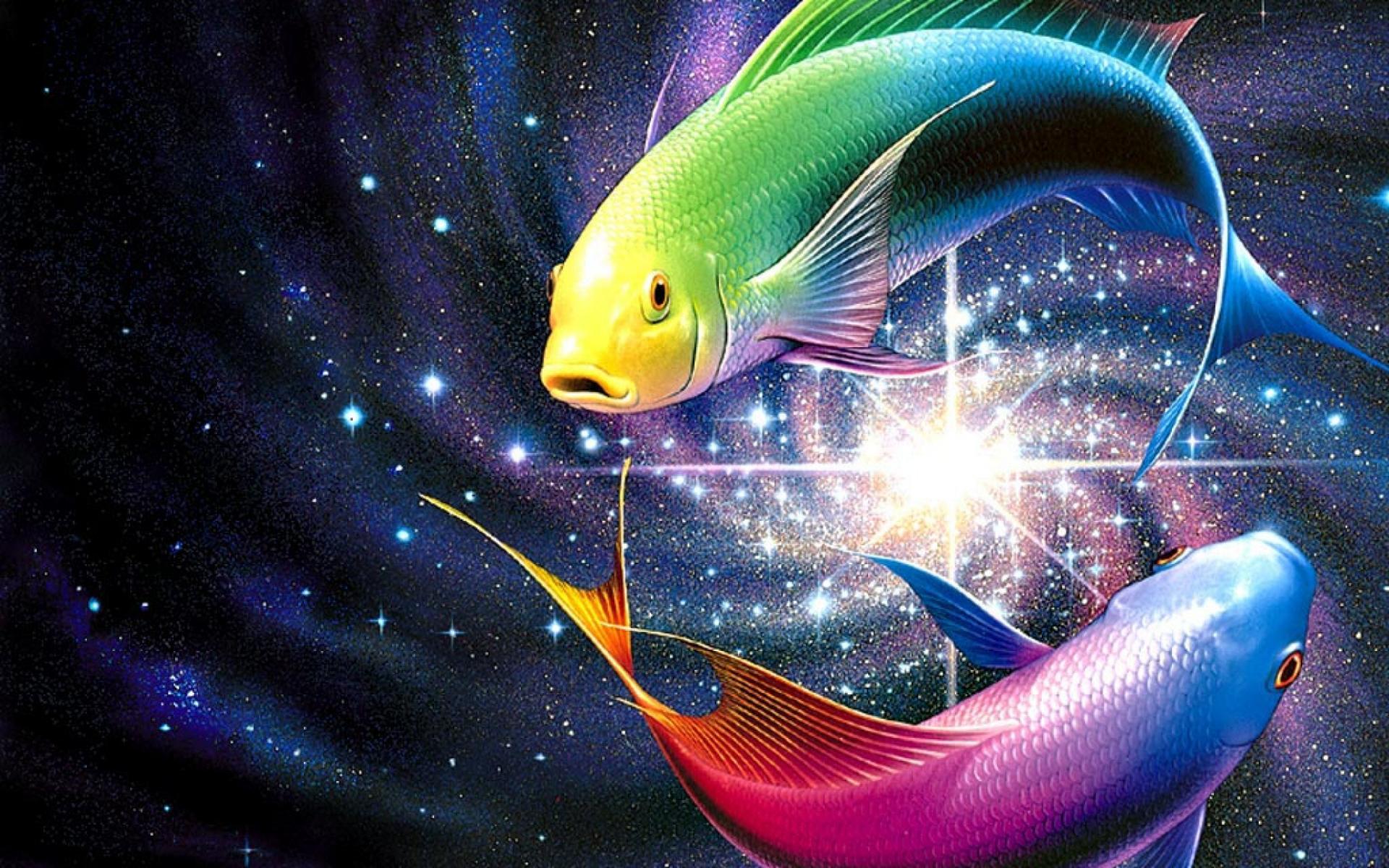 Рыбы зодиака в картинках
