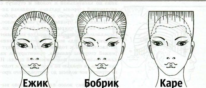 ежик бобрик каре