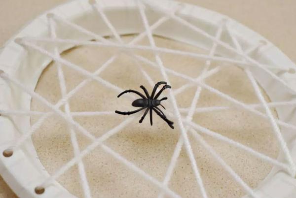 Украшение в виде паука на паутине