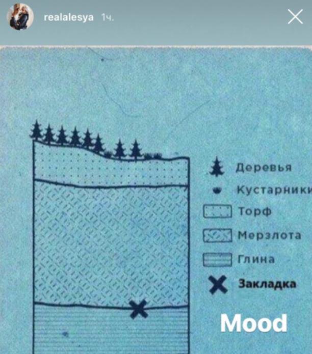 Алеся Кафельникова выложила в Инстаграм картинку про наркотики
