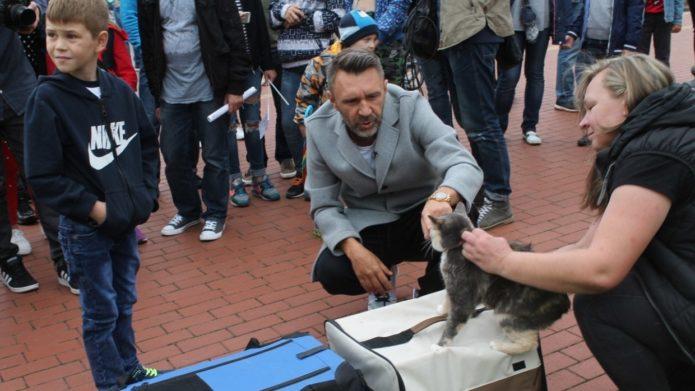 Съёмки телепередачи о котах