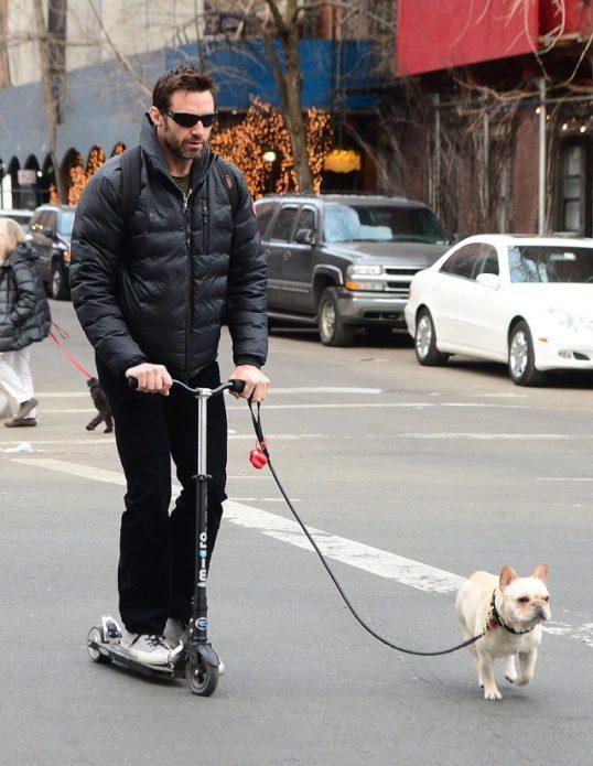 Собака Хью Джекмана
