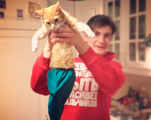 Кошка Александра Гудкова