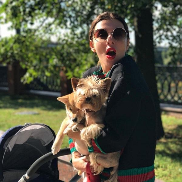 Собаки Анны Седоковой
