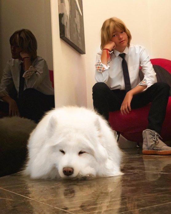Собака Ирины Дубцовой