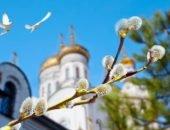 Ветки вербы на фоне церкви