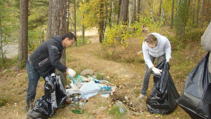 Уборка мусора в лесу