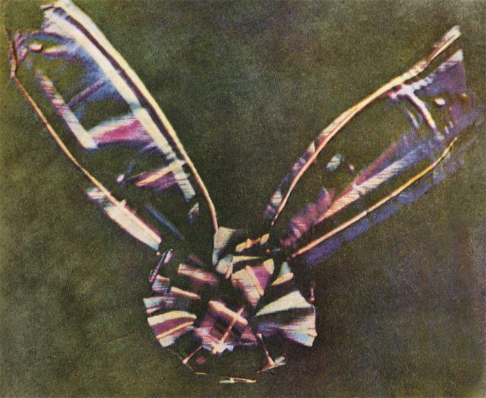 Первое цветное фото