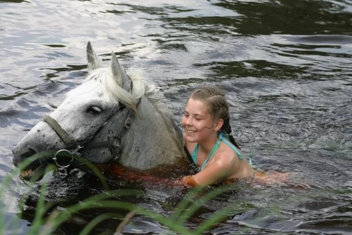 Девушка купает лошадь