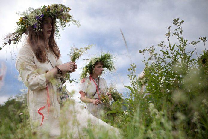 Девушки в славянских нарядах собирают травы