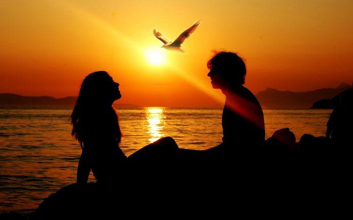 силуэт пары, закат, море, птица