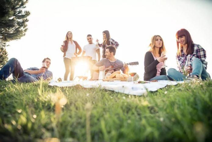 пикник, друзья, зелень, солнце