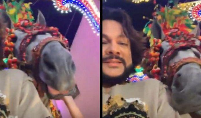 Киркорова покусала лошадь