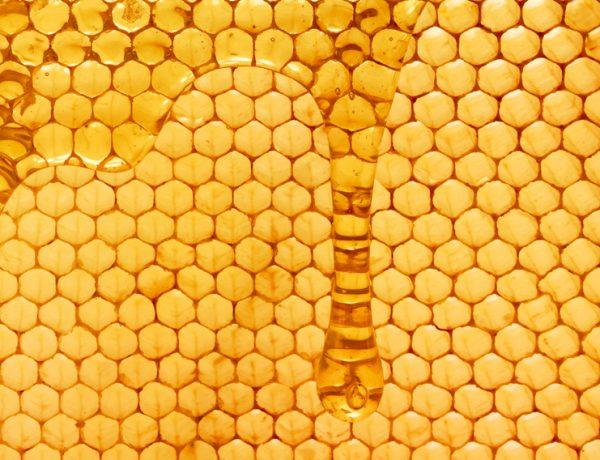 Мёдовые соты