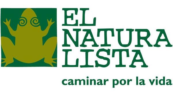 Испанская обувь El naturalista