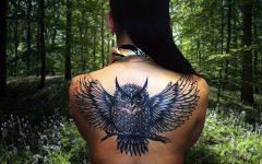 татуировка сова на спине