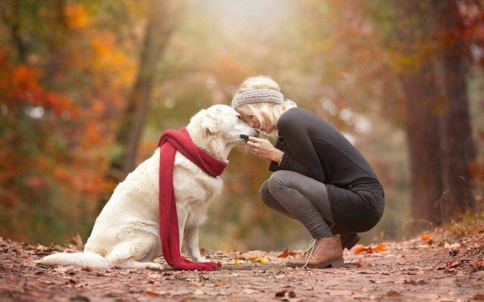 девушка с белой собакой, осень