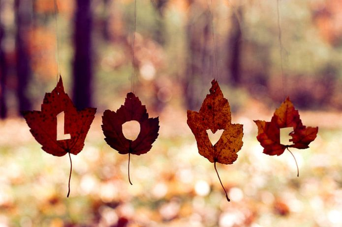 осень, кленовые листья, любовь