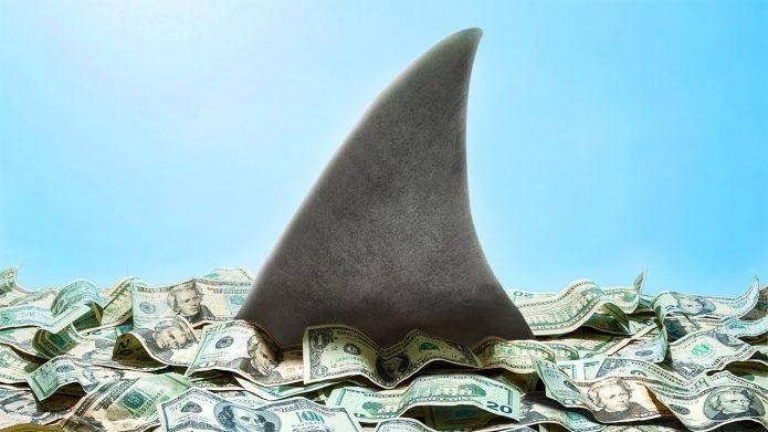 Акулий плавник выглядывает из кучи долларов