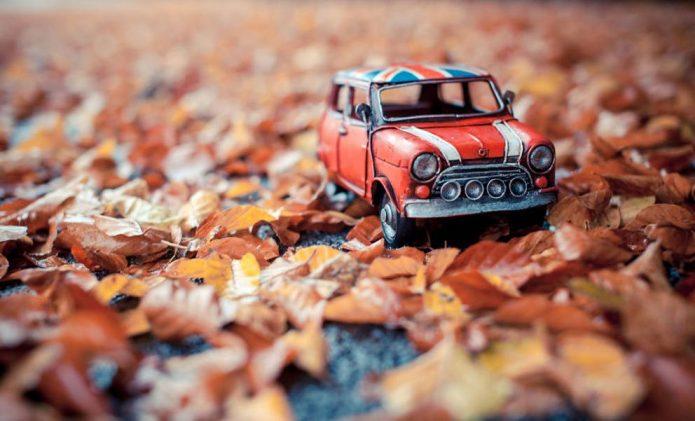 игрушечное авто на осенних листьях