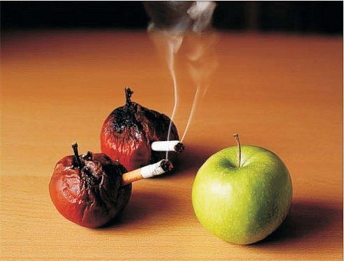 Гнилые яблоки с сигаретами напротив свежего яблока