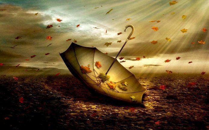 зонт, ветер, небо, осенняя листва