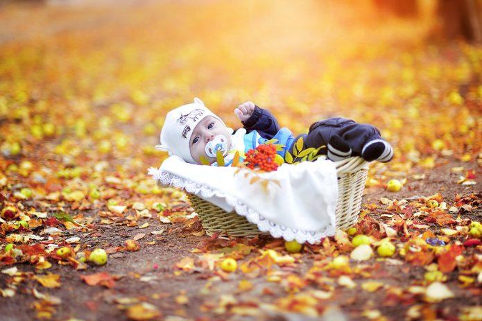 малыш с соской в корзине, осень