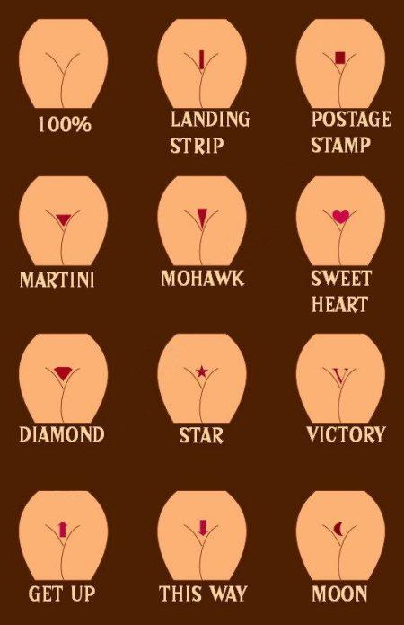 Варианты оформления волос при интимной стрижке