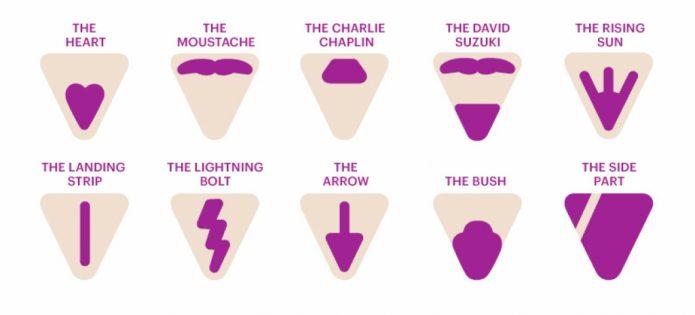 Забавные варианты дизайна зоны бикини