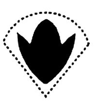Вариант интимной стрижки в виде тюльпана