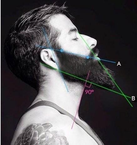 Моделирование бороды
