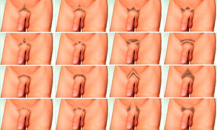 виды мужских интимных стрижек