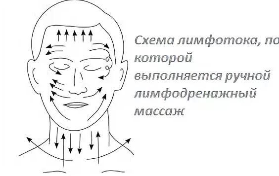 Схема лимфотока на лице