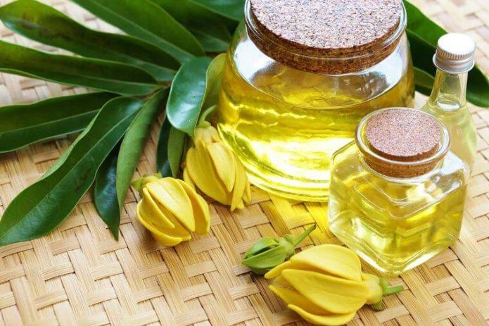 Две баночка с маслом иланг-иланг, цветы и листья растения