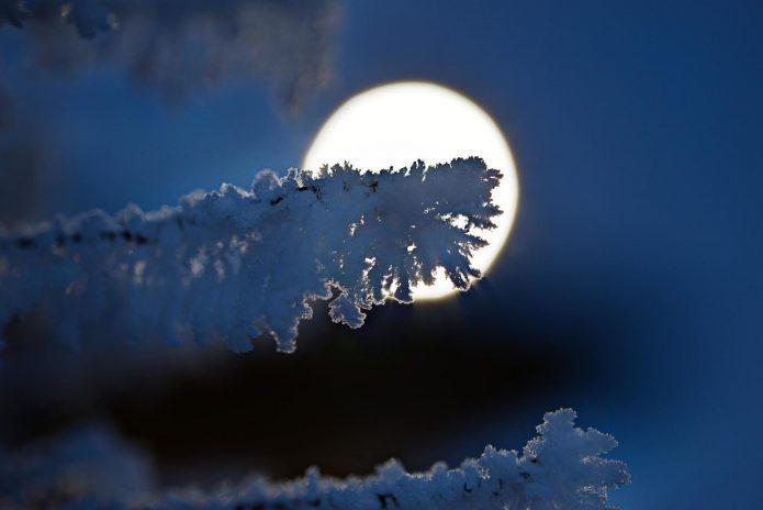 полная луна, снег