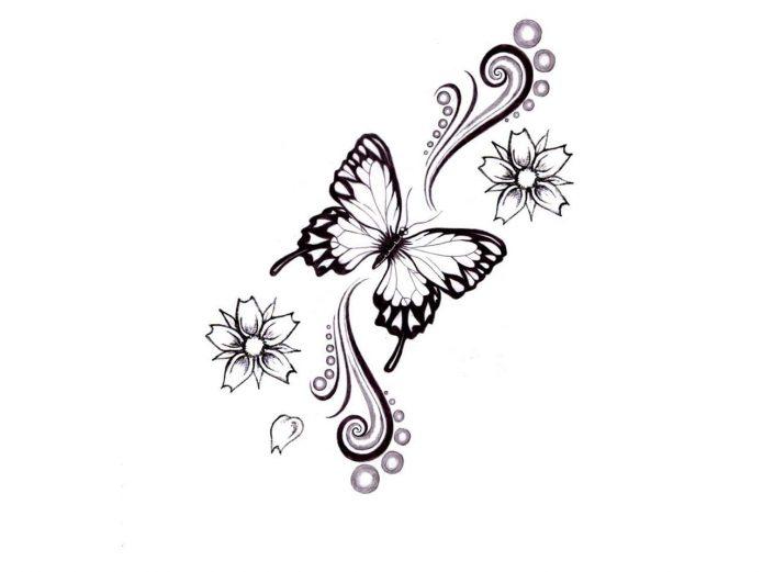 эскиз чб бабочка и узор