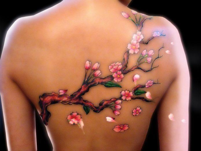 нежная ветка сакуры цветное тату на спине
