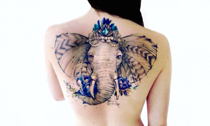 тату слон на спине цветное