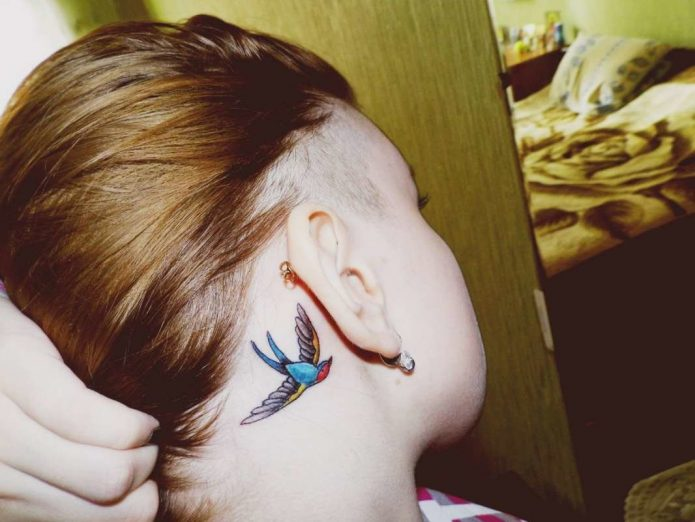 красивая ласточка, тату цветное за ухом