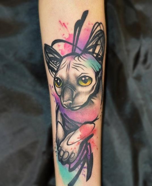 тату акварельное кошка сфинкс на руке