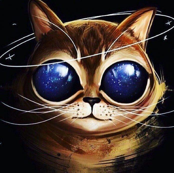 эскиз цветной кот в очках