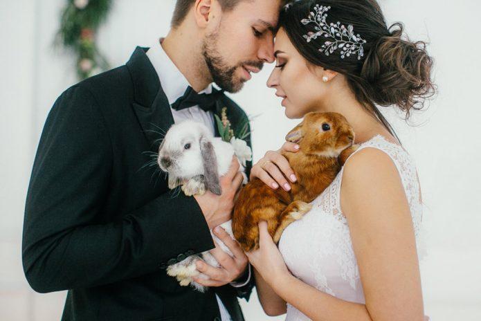 невеста и жених держат двух кроликов