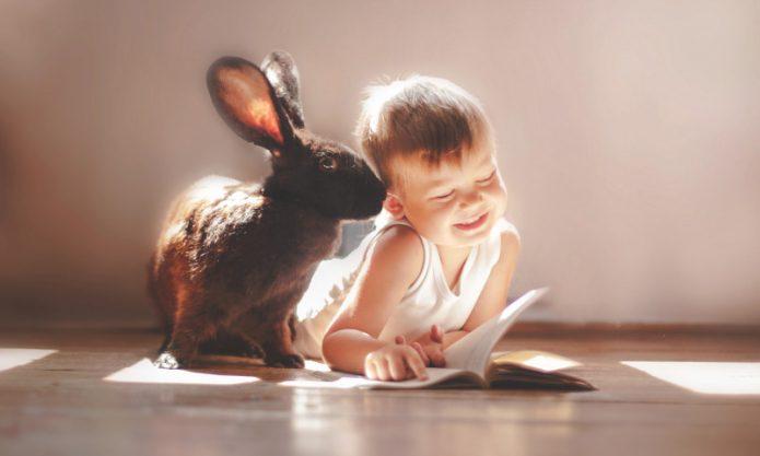 ребёнок и кролик (заяц) читают книгу на полу