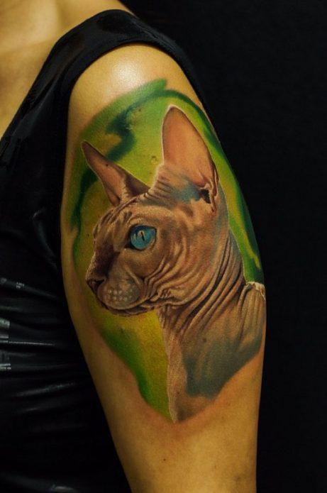 кот сфинск, тату в стиле реализм на плече