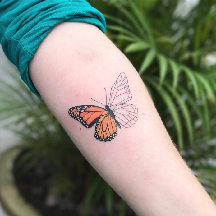 красивая бабочка на предплечье, тату для девушек