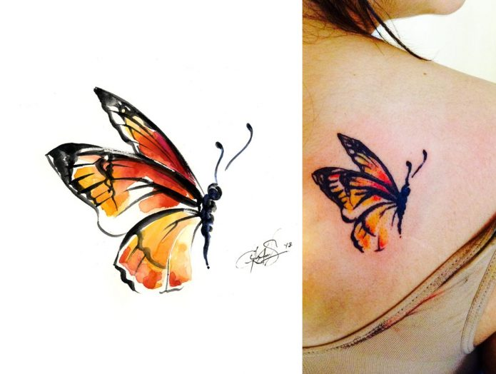 эскиз бабочка, небольшое тату бабочка на лопатке