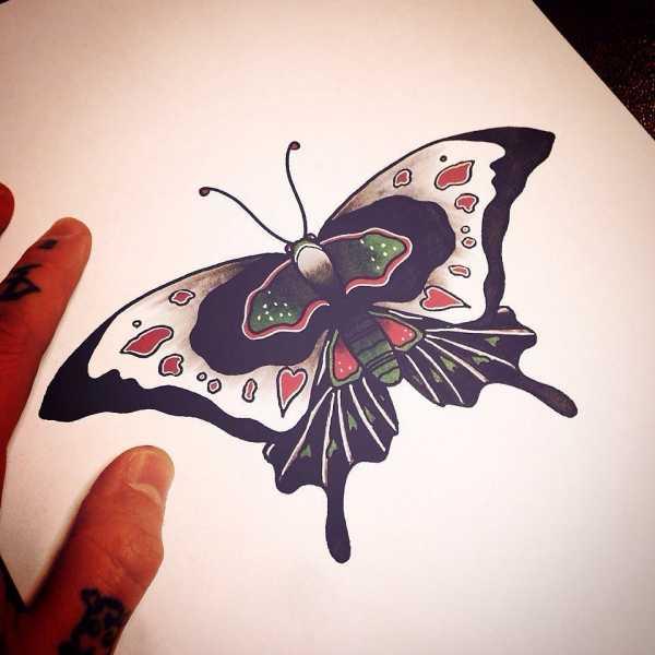 эскиз цветной большая бабочка